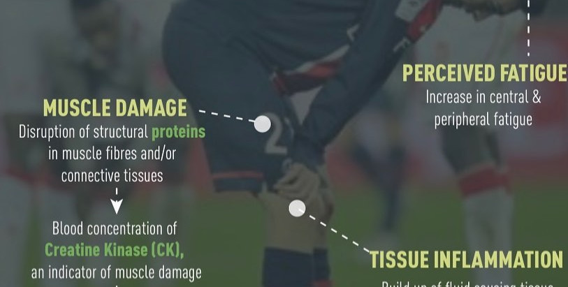 Adult Soccer Players , Tips to recover faster from a Soccer Game