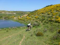 Algarve bike