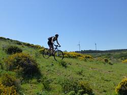 Natural Park Algarve
