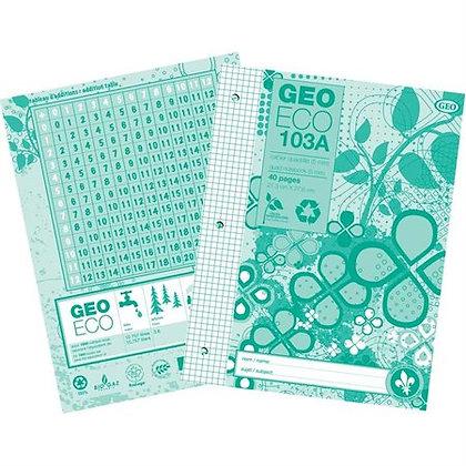 Cahier quadrillé Geo Eco (1)