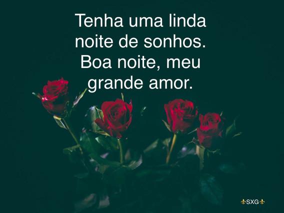 rosas, flores, amor, boa noite