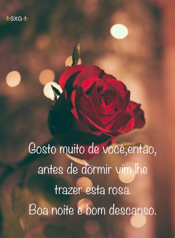 boa noite, rosas, romântico