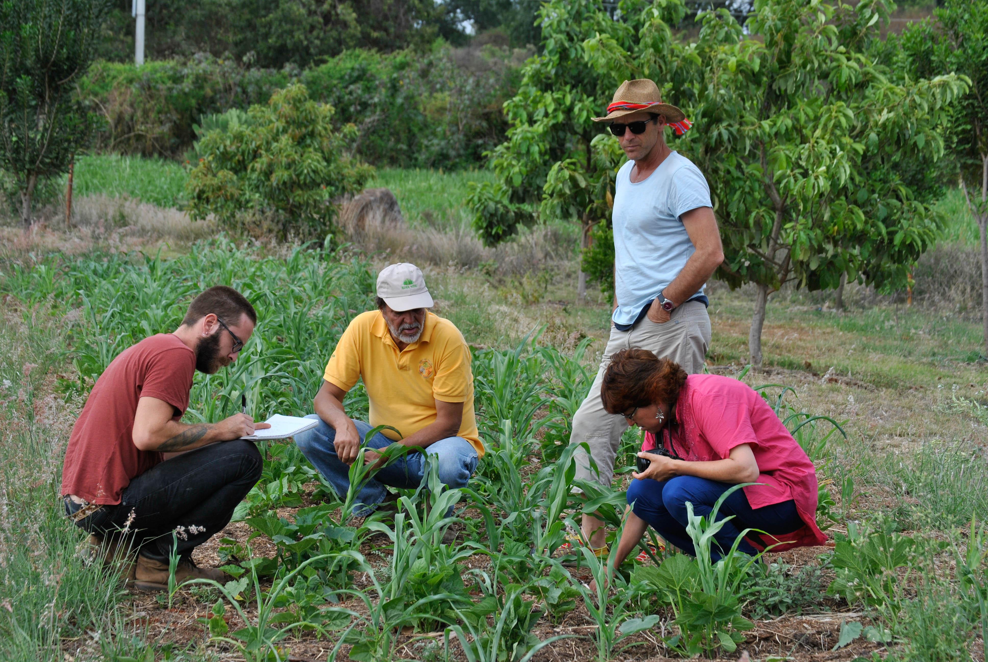 CAPACITACION AGRICULTURA NATURAL