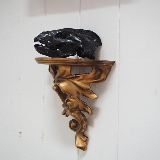 Black Painted Badger Skull