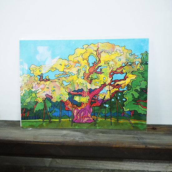 Neon Sherwood Forest Nottingham Major Oak A4 Print