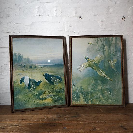 Set of 4 Roland Green Framed Bird Prints Circa. 1896-1972.