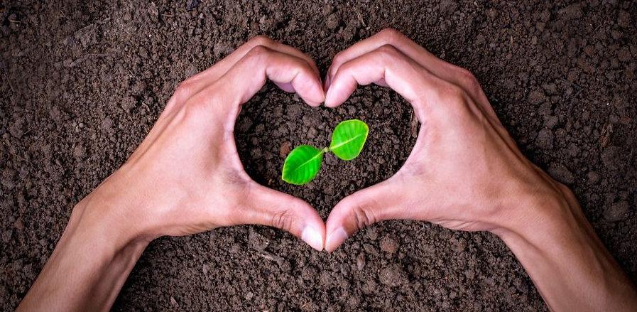 treadlite soil heart.jpg