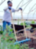 Broadfork - Treadlite Broadfork - 30 in wide - The Market Gardener