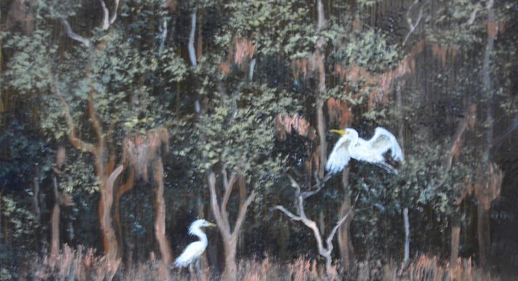 Egret Swamp.jpg