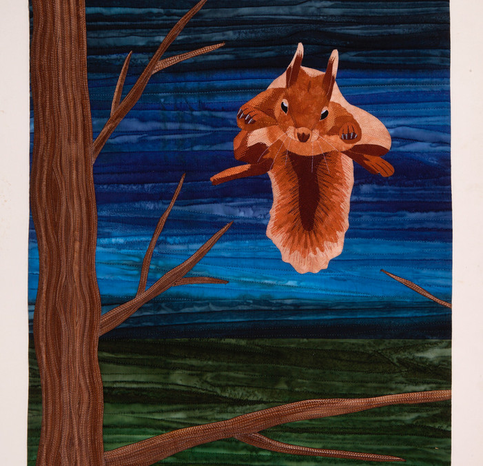 Squirrel Aloft