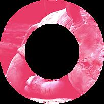 Circle_Rhino.png