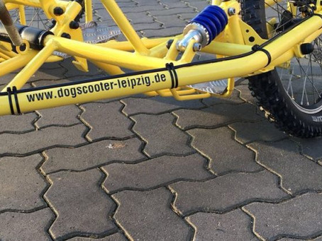 Umbauten/ Trainingswagen von Dogscooter Leipzig