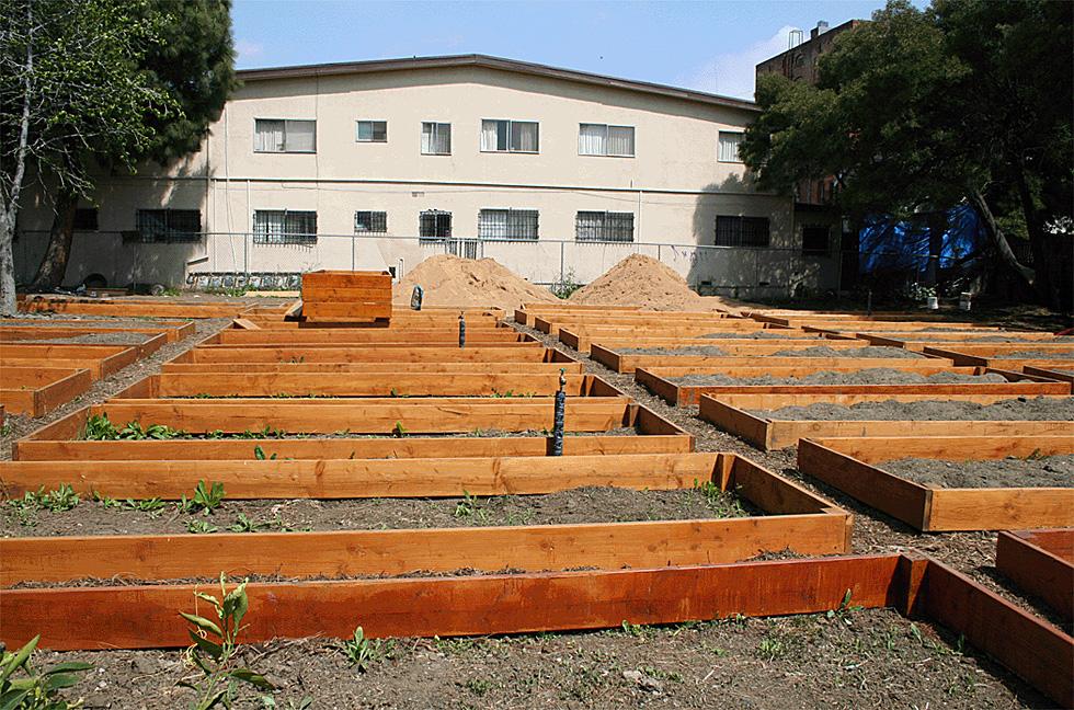 alferov-media-los-angeles-fountain-community-gardens-garden-plots