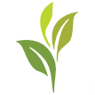 Sprout App Logo