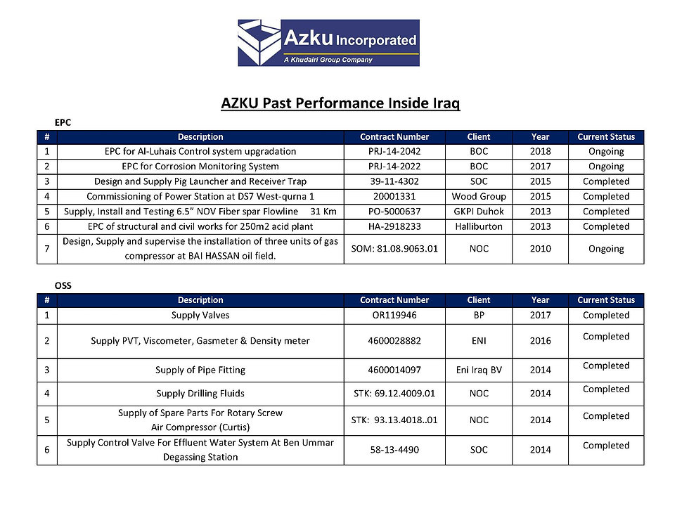 3. Past Performance_Page_1.jpg