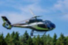 ForestPatrol_1280Res.jpg