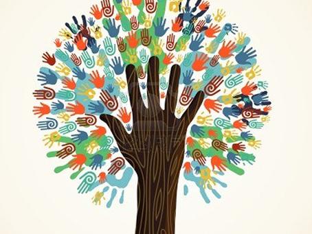 Enseñar a los niños a entender la diversidad.