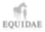 Equidae Psicología