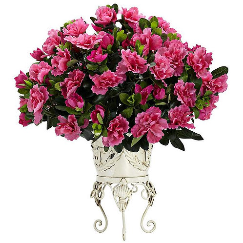 French Door Parisian Azalea
