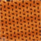 supramolecular_assembly.jpg