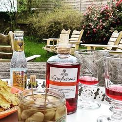 Un trés beau dimanche pour un Ginfusions Framboise & Hibiscus dans Le jardin !! 🌺 ☀️👍Merci _julien