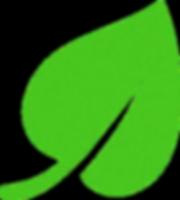 Leaf Logo 80 transparent.png