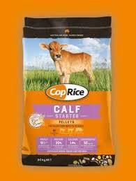 Cop Rice Calf
