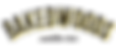 logo insta2.png