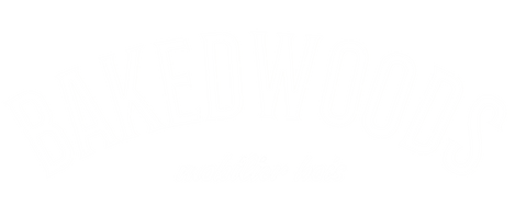 logo insta2 sans.png