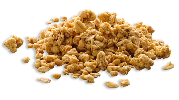 Granola 1.png