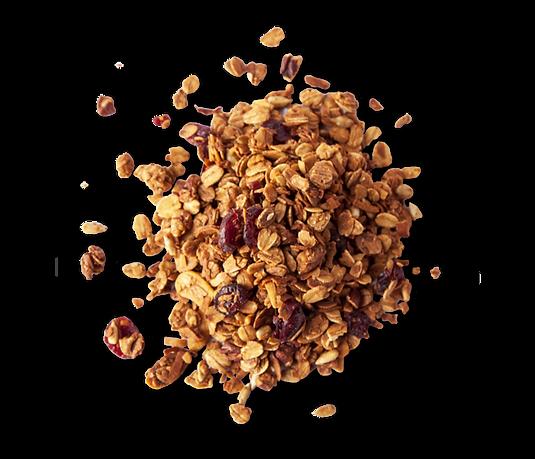 Granola-2.png