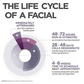 facial_lifecycle.PNG