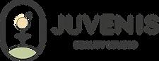 Juvenis_logo_CMYK_horizontal_colorfull.p