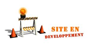 Evolution Site Web