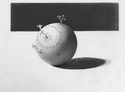 Mei Miysaka - student work 1