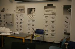 Visual Communications 2