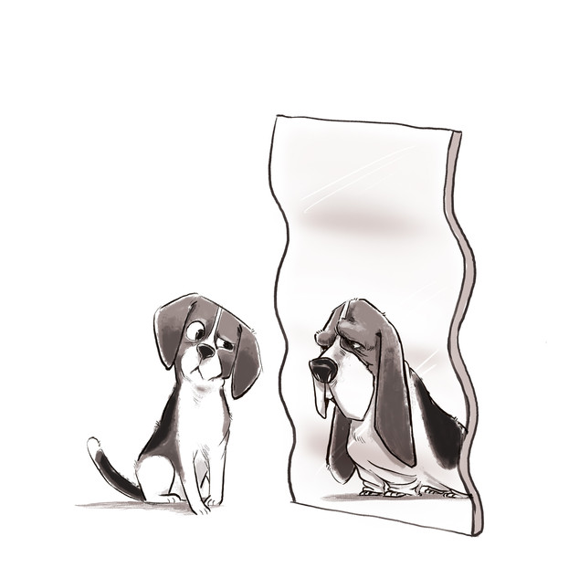 Beagle & Bassett