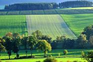 Felder bei Bracht