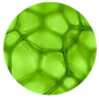 chlorophyll.png
