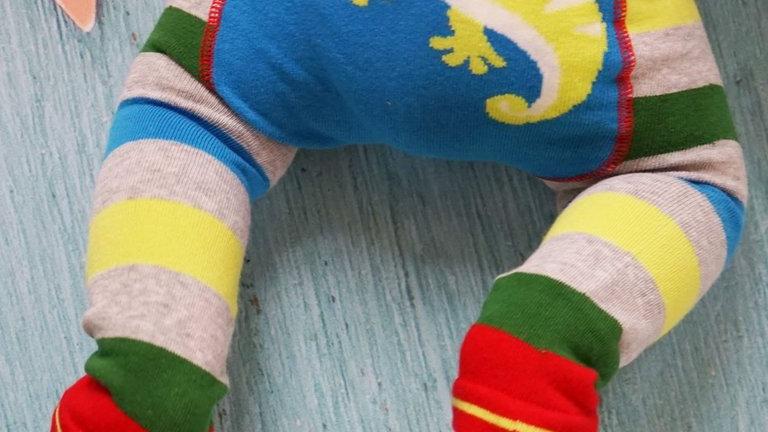Chameleon Knitted