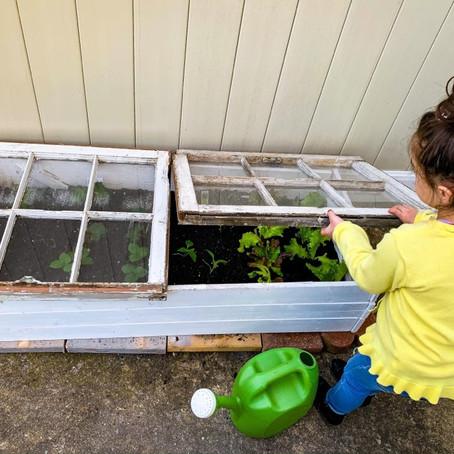 DIY Raised Garden Box