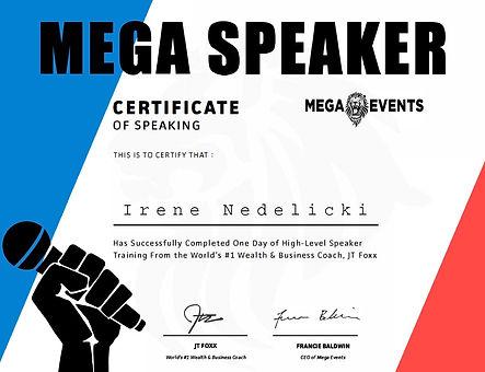 mega speaker.jpg