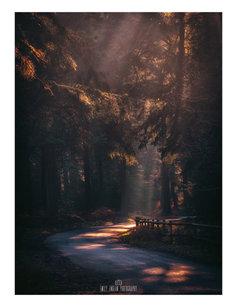 Autumnal Lanes.jpg