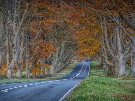 Landscape Photography Hints & Tips