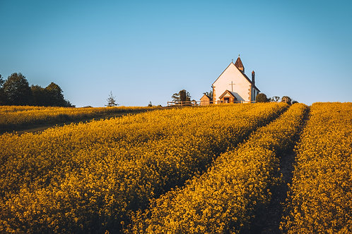 The Chapel in Yellow - 061