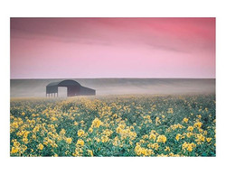 The Barn__Yesterday morning I paid a tri