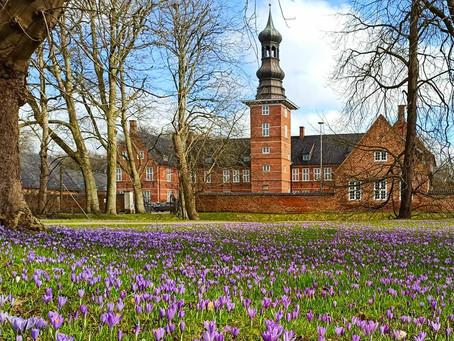 Der Frühling kommt - und der HOLZSTAND ist wieder da