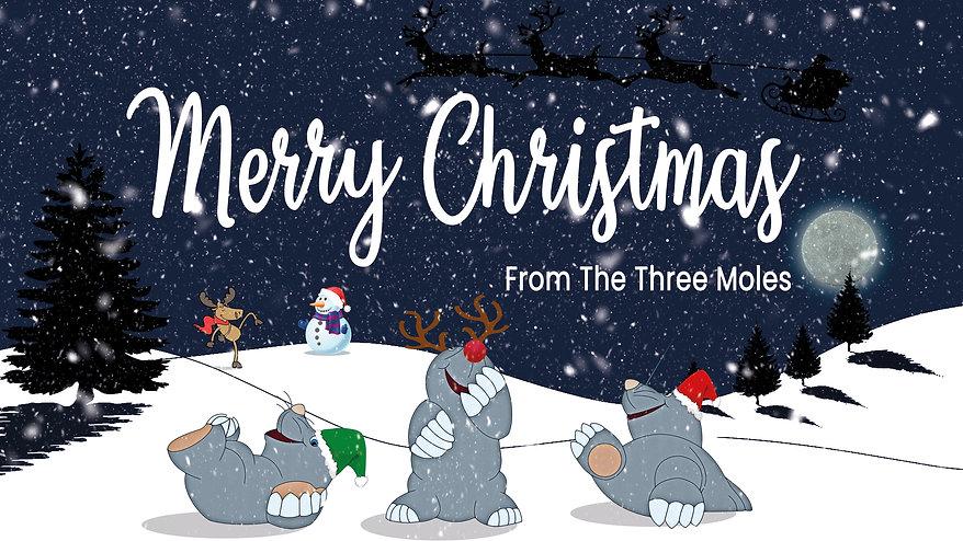Christmas Slide.jpg