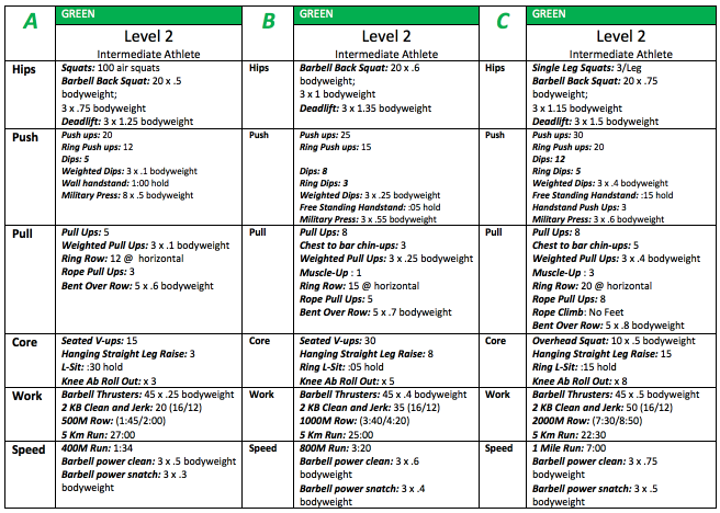 Example of Level 2 Benchmarks