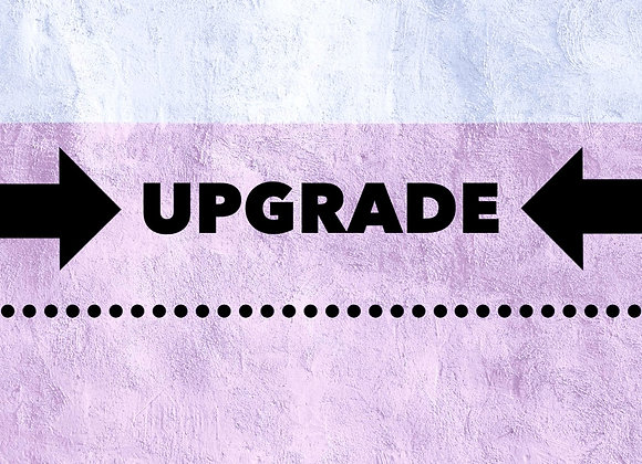 Upgrade  (selected items)